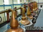 Photo for: New Distillery, Other Openings