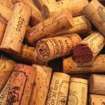 Photo for: Fine wine in focus 2001