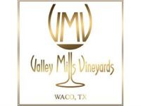 Photo for: Valley Mills Vineyards Estate Tempranillo Wins Double Gold at San Francisco Chronicle Wine Competition