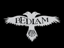 Photo for: Graybeard Distillery to Debut Bedlam Vodka at WSWA 2017