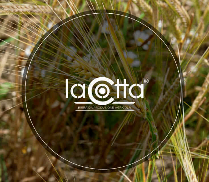 Photo for: Lacotta