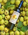Photo for: Quince White Wine