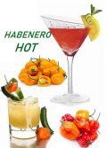 Photo for: Habanero Vodka - Custom Bottling Spirits