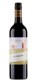 Photo for: Climbing Shiraz