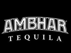 Photo for: Chris Noth Becomes Majority Stake Owner of Ultra Premium Ambhar Tequila